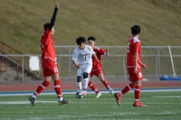 Gallery: Boys Soccer Auburn @ Thomas Jefferson